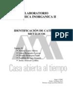 Practica Inorganica Cationes