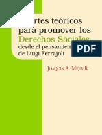 E-Book_Aportes teóricos para la promoción de los Derechos Sociales