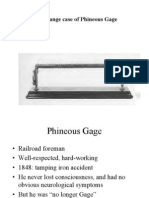 phineous gage