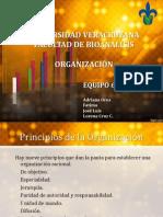 ORGANIZACION2.ppt