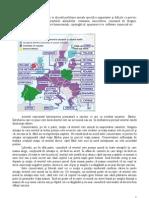 etica-aplicata-cateva-probleme-sem-4-if1.pdf