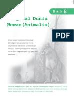 Dunia Hewan (Animalia)