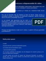 Diagnosticarea Sistemului de Rulare