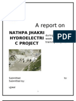 Hydroelectric Project