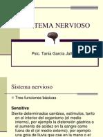 5 sistema nervioso.ppt