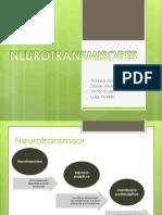 Neurotransmisores y Neuropeptidos