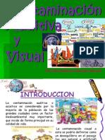 Contaminación Auditiva y Visual.pptx