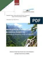 Produção de etanol com biomassa florestal - Estágio