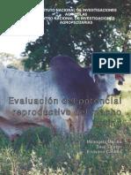 Evaluacion Reproductiva Macho Bovino