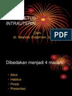 IZQ-OBFIS-4