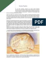 Artigo - Tecnica Projetiva - Wagner Borges