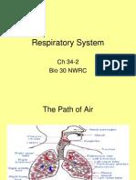 34-2 Respiratory System.ppt
