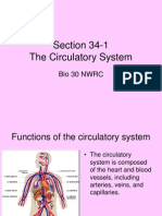 Section 34-1.ppt