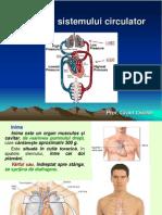 Lectie 23 Anatomia Sistemului Circulator.