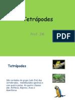 Tetrapod Es
