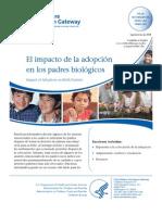 El Impacto de La Adopcion