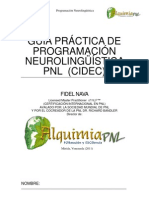 guaprcticapnlcidec732-130225201356-phpapp01