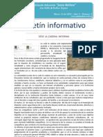 BOLETIN INFORMATIVO Nº.08_2013