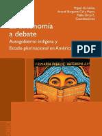 La autonomía a debate autogobierno indígena y Estado plurinacional en América Latina