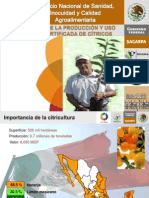 Programa de Certificacion de Citricos -Mexico - Senasica- Sagarpa