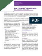 WOSM European Scout Symposium 2013 Invitation FR
