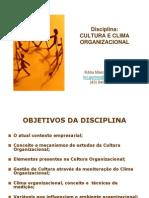Cultura e Clima Organizacional Xerox Lins 2010