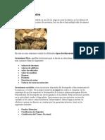 Tipos de Inversión.doc
