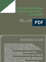 proyectodeimportaciondeunproductodelexterior-100516220931-phpapp01