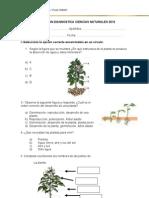 Evaluacion Duagnost Naturaleza 2013 (Autoguardado)