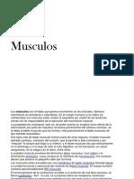 Musc Ulos