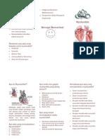Leaflet Myokarditis