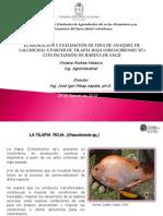 Presentacion Para El Congreso Vida Deanaquel Salchicha de Tilapia