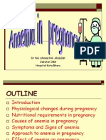 Anaemia in Pregnancy-hm