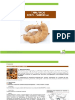 Tamarindo (1).pdf