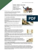 CMC - Tema 4 - (pdf)