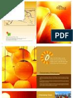 tulip-orange.pdf