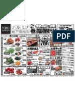 termina130322.pdf