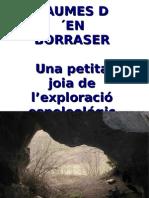 Borrasser 12
