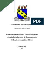 Dissertação Paulo 2007