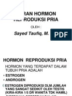 fungsi hormon reproduksi pria.ppt