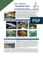 Fazenda Peixe