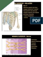 Anatomia Topográfica 4