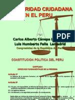 Peru Seguridad Ciudadana