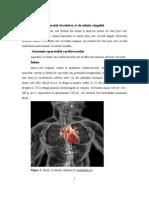Lp 6. Aparatul Cardio Circulator