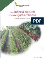 9 Sequencia Cultural Morango Framboesa Producao Precoce de Morango-1