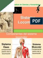 579 Sistema Oseo Muscular