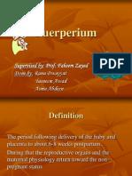 Puerperium Seminar