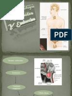 Farmacología Metabólica Y Endocrina