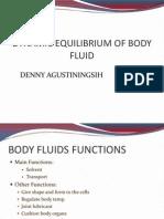 BODY FLUID 1.4 (2013)