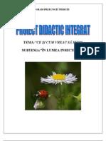 Pr.int.Insecte